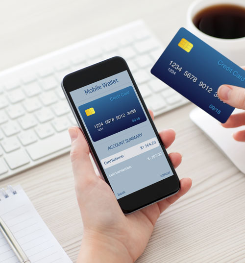 Holding phone with mobile wallet
